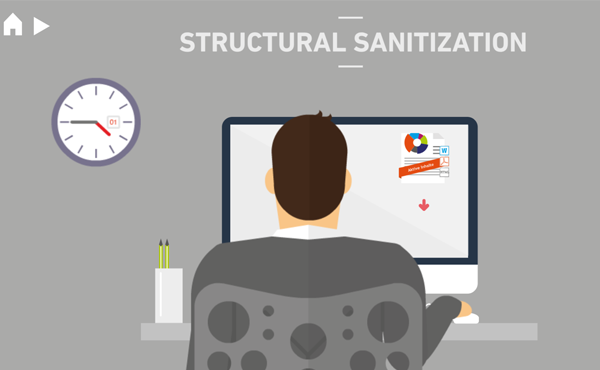 Structural Sanitization video